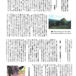 民報なかつがわ 6月21日号 (中津川市6月議会報告)